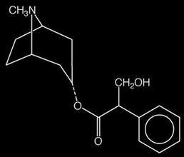 Hyosciamin / Atropin